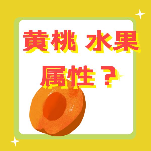 黄桃属于温性水果